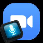 Как в Zoom поставить микрофон на кнопку