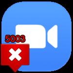 Ошибка 5003 в Zoom